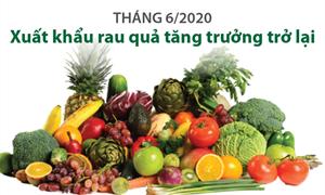 [Infographics] Tháng 6/2020: Xuất khẩu rau quả tăng trưởng trở lại