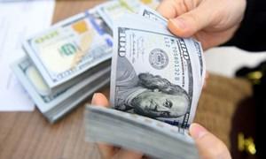 Tỷ giá được dự báo ổn định trong dài hạn