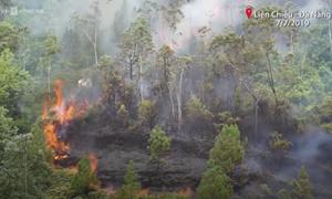 [Video] Nóng: 2 ha rừng ở Đà Nẵng cháy ngùn ngụt