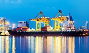 Kinh tế Việt Nam: Sau cơn mưa trời lại sáng