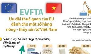 [Infographics] Ưu đãi thuế của EU cho hàng nông thủy sản Việt Nam