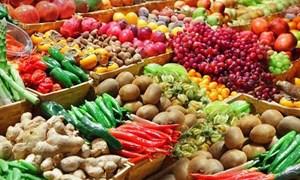 [Infographics] Xuất khẩu rau quả 6 tháng đầu năm 2020 đạt 1,79 tỷ USD