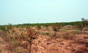 Những thách thức về an ninh nguồn nước ở Việt Nam