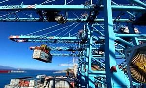 Cước vận tải đường biển tiếp tục duy trì các kỷ lục trong năm 2022