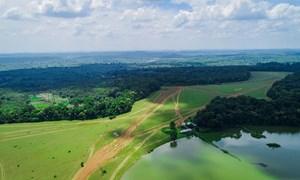Phát triển du lịch góp phần tăng cường nguồn lực tài chính cho tỉnh Bình Phước