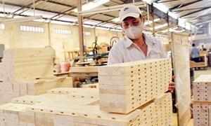 """Bị áp thuế tới 200%, lo gỗ Trung Quốc """"đội lốt"""" hàng Việt xuất sang Mỹ"""