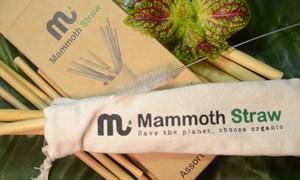 Bảo vệ môi trường với ống hút Mammoth Straw 100% hữu cơ