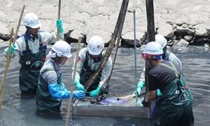 [Video] Thí điểm làm sạch sông Tô Lịch sẽ phải thực hiện lại từ đầu