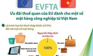 [Infographics] Ưu đãi thuế của EU dành cho hàng công nghiệp Việt Nam