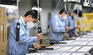 Ba kịch bản tăng trưởng kinh tế Việt Nam năm 2021