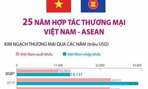 [Infographics] 25 năm hợp tác thương mại Việt Nam - ASEAN