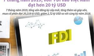 [Infographics] Vốn FDI vào Việt Nam đạt hơn 20 tỷ USD trong 7 tháng