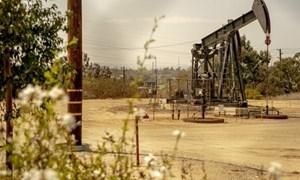 Giá xăng dầu hôm nay 29/7: Lao dốc