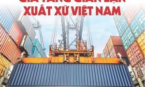 [Infographics] Gia tăng gian lận xuất xứ Việt Nam