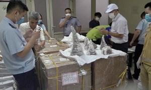 [Video] 55 khúc sừng tê giác bị bắt tại sân bay Nội Bài