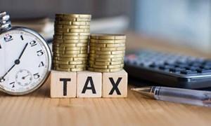 Tổng cục Thuế: Người dân, doanh nghiệp cần nhanh chóng gửi giấy gia hạn nộp thuế