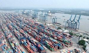 Tân Cảng Cát Lái tạm ngưng tiếp nhận hàng hóa