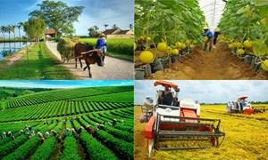 Phát triển kinh tế nông thôn ở các nước và thực tiễn tại Việt Nam