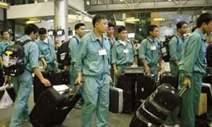 Đề xuất tăng mức hỗ trợ người lao động từ Quỹ hỗ trợ việc làm ngoài nước