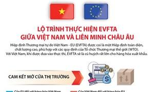 [Infographics] Lộ trình thực hiện EVFTA giữa Việt Nam và Liên minh châu Âu