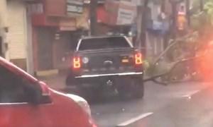 [Video] Xe bán tải tiền tỷ ủi cây đổ sau bão giúp đi lại dễ dàng