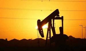 Giá xăng dầu hôm nay 5/8: Giảm mạnh