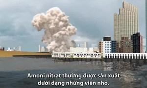 [Infographics] Hóa chất gây thảm họa ở Beirut dễ nổ như thế nào?