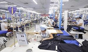 Cho vay gần 145 tỷ đồng để trả lương người lao động