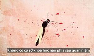 [Video] Những yếu tố biến cơ thể thành nam châm hút muỗi