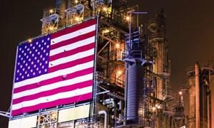 Giá xăng dầu hôm nay 13/8: Chững lại