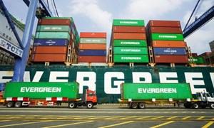 Hàng container qua cảng biển Việt Nam tiếp tục tăng mạnh