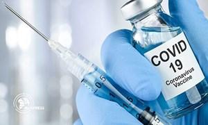 [Infographics] Cuộc đua nghiên cứu, sản xuất vaccine Covid-19 trên thế giới