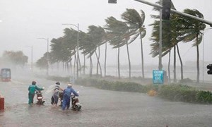 [Video] Đường đi của áp thấp nhiệt đới trên Biển Đông