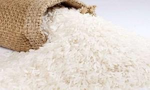 Giá lúa OM 18 giảm 200 đồng