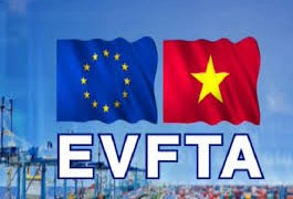 Thành lập Nhóm tư vấn theo quy định của Chương Thương mại và Phát triển bền vững trong EVFTA