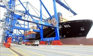 [Infographics] Khối lượng hàng hóa thông cảng ước đạt 57,3 triệu TEU