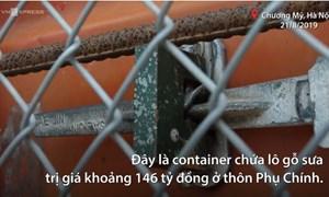 [Video] Nhiều lớp bảo vệ lô gỗ sưa 146 tỷ chờ ngày bán