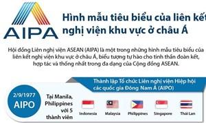 [Infographic] AIPA: Hình mẫu tiêu biểu của liên kết nghị viện khu vực ở châu Á