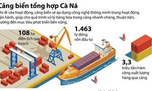 [Infographics] 1.463 tỷ đồng xây dựng Cảng biển tổng hợp Cà Ná