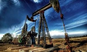 Giá xăng dầu diễn biến bất thường?