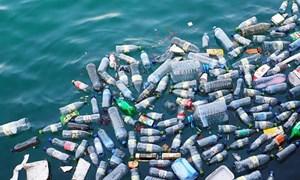 [Infographics] Đến năm 2021, các cửa hàng, siêu thị ở đô thị không sử dụng đồ nhựa dùng một lần