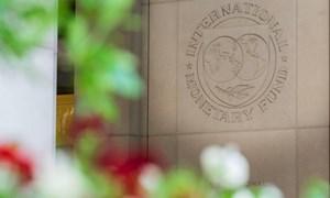 Vì sao lần phân bổ dự trữ SDR sắp tới của IMF cho Việt Nam và các nước thành viên lại có ý nghĩa rất quan trọng?
