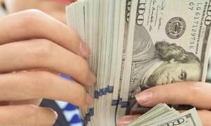 Reuters: Đà suy giảm của đồng USD có thể kéo dài sang năm 2021