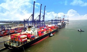 Tổng kim ngạch xuất nhập khẩu qua Cục Hải quan Hải Phòng đạt 9,4 tỷ USD trong tháng 8