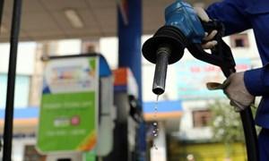 Giá xăng dầu vững đà tăng