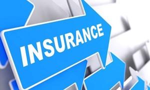 [Infographics] Tình hình thị trường bảo hiểm Việt Nam đến hết tháng 8/2021