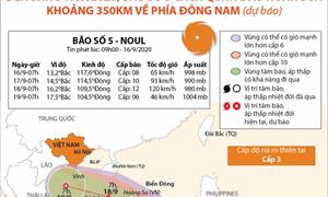[Infographics] Đến sáng 17/9, bão số 5 dự báo cách quần đảo Hoàng Sa khoảng 350km