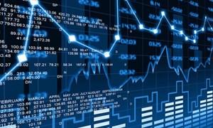 Số liệu thị trường chứng khoán tháng 8 năm 2019