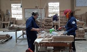 Xuất khẩu gỗ và sản phẩm gỗ sang thị trường Canada: Triển vọng tích cực