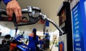Giá xăng dầu vững đà giảm